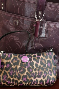 Wristlet for inside diaper bag