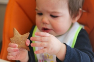 Homemade.Teething.Biscuits (3)