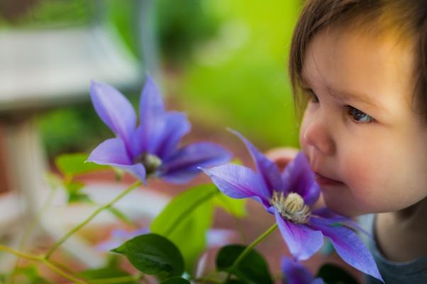 Flowers-9828